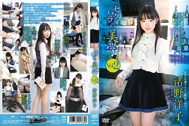 セクハラの美学 vol.2 渚野洋子 [JMDV-231]