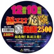12時間10枚組極エロ危険裏動画2500