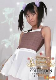 【特価】宮沢春香 春香のお嬢様コレクション