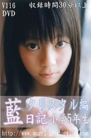 藍日記 クリスタル編 小学5年生