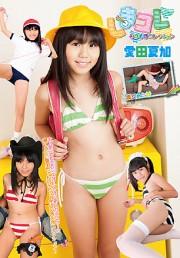 しまコレ ~しましまコレクション~ 愛田夏加 DVD版