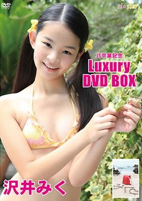 Luxury DVD BOX 沢井みく