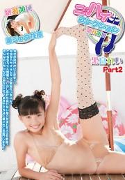 ニーハイコレクション ~絶対領域~ 黒宮れい Part2 DVD版