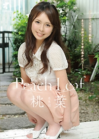 Peach Leaf 桃葉(ももは)