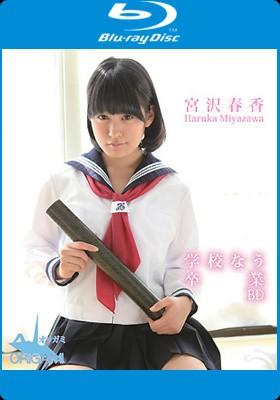 学校なう 卒業 BD 宮沢春香 表紙画像