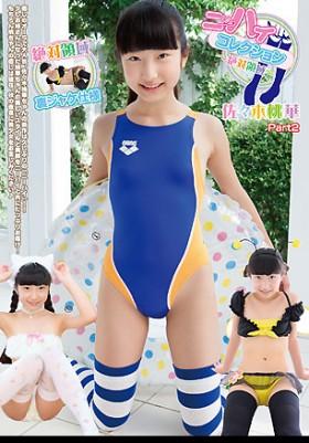 ニーハイコレクション ~絶対領域~ 佐々木桃華 Part2 DVD版