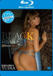 BLACK HERB 黒ギャルの誘惑 YUIKA BD