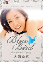 Blue Bird 大西麻恵