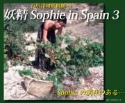 【石川洋司妖精館】妖精 Sophie in Spain 3