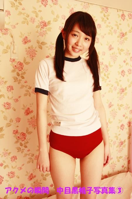 アクメの瞬間 中目黒桃子3 表紙画像